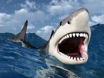 μεγάλο λευκό καρχαριών ελεύθερη απεικόνιση δικαιώματος