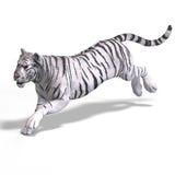 μεγάλο λευκό τιγρών γατών Στοκ Φωτογραφία