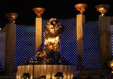 μεγάλο λιοντάρι mgm Στοκ εικόνα με δικαίωμα ελεύθερης χρήσης
