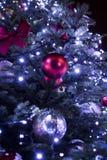 Μεγάλο μπλε χριστουγεννιάτικο δέντρο στο πάρκο στη νύχτα στοκ εικόνες