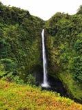 μεγάλο νησί της Χαβάης πτώσεων akaka στοκ εικόνα