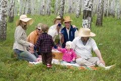 μεγάλο οικογενειακό picnic Στοκ φωτογραφία με δικαίωμα ελεύθερης χρήσης