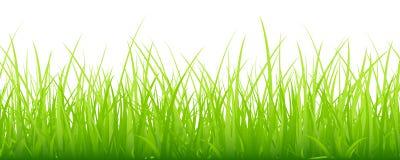 Μεγάλο οριζόντιο έμβλημα λιβαδιών πράσινο ελεύθερη απεικόνιση δικαιώματος