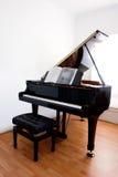 μεγάλο πιάνο Στοκ Εικόνες