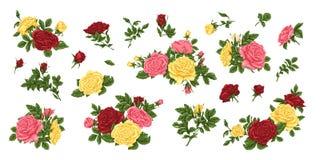 Μεγάλο σύνολο ρόδινων, κίτρινων και κόκκινων τριαντάφυλλων, ανθοδεσμών, λουλουδιών και οφθαλμών Στοκ Εικόνες