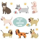 Μεγάλο σύνολο σκυλιών κινούμενων σχεδίων των διαφορετικών φυλών ελεύθερη απεικόνιση δικαιώματος