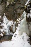 Μεγάλο φαράγγι γερακιών στο σλοβάκικο εθνικό πάρκο παραδείσου το χειμώνα, Σλοβακία στοκ φωτογραφίες