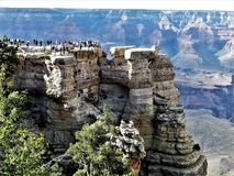 Μεγάλο φαράγγι σχηματισμού βράχου στοκ εικόνες