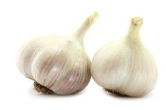 μεγάλο garlics δύο Στοκ Εικόνα