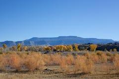 Μεγάλο Mesa με το φύλλωμα φθινοπώρου στο πρώτο πλάνο Στοκ Εικόνες