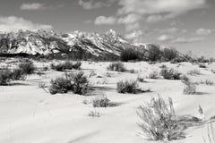 Μεγάλο Tetons, μεγάλο εθνικό πάρκο teton, Wyoming Στοκ φωτογραφίες με δικαίωμα ελεύθερης χρήσης