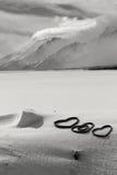 Μεγάλο Tetons, μεγάλο εθνικό πάρκο teton, Wyoming Στοκ εικόνα με δικαίωμα ελεύθερης χρήσης