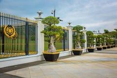 Μεγάλα δέντρα στα δοχεία κοντά στο φράκτη, Royal Palace Istana Negara & x28 Istana Negara& x29  Στοκ Φωτογραφίες