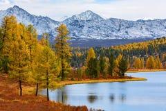 μεγάλα βουνά βουνών τοπίων Φθινόπωρο Στοκ φωτογραφίες με δικαίωμα ελεύθερης χρήσης