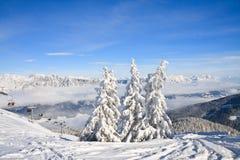 μεγάλα βουνά βουνών τοπίων Schladming australites στοκ εικόνα με δικαίωμα ελεύθερης χρήσης