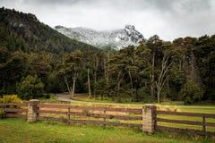 Μεγάλα βουνά χιονιού με το δάσος, bariloche, τοπίο βουνών στοκ φωτογραφίες με δικαίωμα ελεύθερης χρήσης