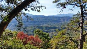 Μεγάλα βουνά Tennessee smokey Στοκ Φωτογραφία
