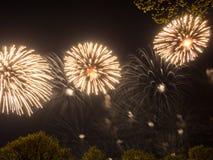 Μεγάλα ζωηρόχρωμα πυροτεχνήματα Στοκ Φωτογραφία