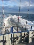 Μεγάλα θαλάσσια βάθη που αλιεύουν στο ρεύμα κόλπων Στοκ Εικόνες
