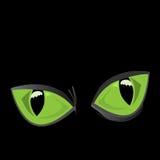 Μεγάλα μάτια γατών απεικόνιση αποθεμάτων
