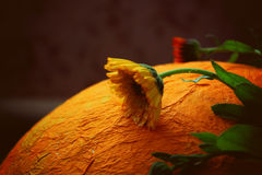 Μεγάλα πορτοκαλιά αυγό και λουλούδια Στοκ Φωτογραφία