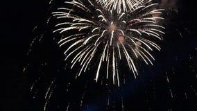 Μεγάλα πυροτεχνήματα FullHD για το μεγάλο φινάλε απόθεμα βίντεο