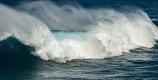 Μεγάλα σαγόνια Maui Χαβάη κυμάτων Στοκ Εικόνα