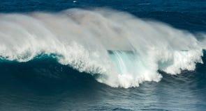 Μεγάλα σαγόνια Maui Χαβάη κυμάτων Στοκ εικόνα με δικαίωμα ελεύθερης χρήσης
