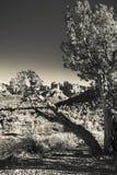 μεγάλα τοπία στοών ερήμων πόλεων άψυχα περισσότερο η άλλη προηγούμενη εργασία παραλλαγής δέντρων ηλιοβασιλέματος πανοράματός μου Στοκ φωτογραφία με δικαίωμα ελεύθερης χρήσης
