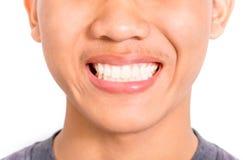 Μεγάλα δόντια hornetNice Στοκ εικόνα με δικαίωμα ελεύθερης χρήσης