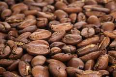 Μεγάλα arabica φασόλια καφέ Στοκ εικόνες με δικαίωμα ελεύθερης χρήσης