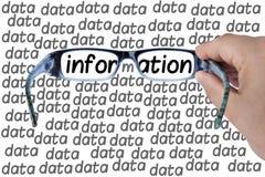 Μεγάλη έρευνα γυαλιών πληροφοριών στοιχείων που απομονώνεται Στοκ Εικόνα