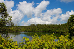 Μεγάλη λίμνη bassin στοκ εικόνα με δικαίωμα ελεύθερης χρήσης