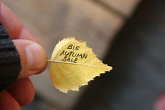 Μεγάλη ιδέα πώλησης φθινοπώρου, κείμενο σχετικά με το κίτρινο φύλλο στρέψτε μαλακό Στοκ Εικόνες