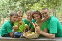 Μεγάλη οικογένεια με το σύνολο καλαθιών των μήλων Στοκ φωτογραφία με δικαίωμα ελεύθερης χρήσης