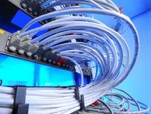 Μεγάλη ομάδα Διαδικτύου που τηλεγραφεί στο κέντρο δεδομένων Στοκ Εικόνα