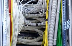Μεγάλη ομάδα ιωδών καλωδίων Διαδικτύου utp στο κέντρο δεδομένων Στοκ Φωτογραφίες