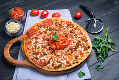 Μεγάλη πίτσα bolognese Στοκ Εικόνα
