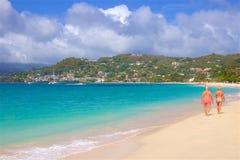 Μεγάλη παραλία Anse στη Γρενάδα, καραϊβική Στοκ Εικόνα