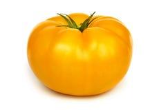 Μεγάλη φρέσκια κίτρινη ντομάτα Στοκ Εικόνες