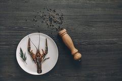 Μεγάλοι φρέσκοι ζωντανοί αστακοί στο άσπρο πιάτο Στοκ εικόνες με δικαίωμα ελεύθερης χρήσης