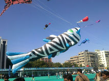 Μεγάλος ικτίνος ψαριών στο διεθνές φεστιβάλ ικτίνων, Ahmedabad στοκ εικόνα με δικαίωμα ελεύθερης χρήσης