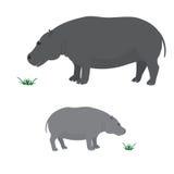 Μεγάλος και λίγο hippo Στοκ Εικόνα