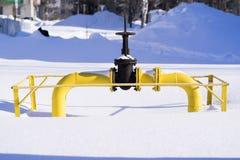 Μεγάλος κόκκορας στο σωλήνα αερίου το χειμώνα στο χιόνι Στοκ Εικόνες