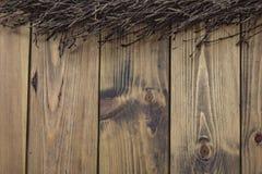 Μεγάλος κλώνος σημύδων στο ξύλινο υπόβαθρο Στοκ Φωτογραφίες