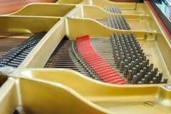 μεγάλος μέσα στο πιάνο στοκ εικόνα