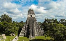 Μεγάλος ναός ιαγουάρων σε Tikal Στοκ Φωτογραφίες