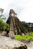 Μεγάλος ναός ιαγουάρων, Tikal, Γουατεμάλα Στοκ Εικόνες