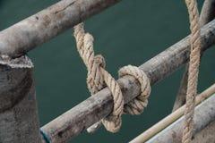 Μεγάλος πάκτωνας με το στυλίσκο, που δένεται στο λιμάνι Στοκ φωτογραφία με δικαίωμα ελεύθερης χρήσης