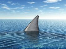 Μεγάλο άσπρο πτερύγιο καρχαριών Στοκ εικόνα με δικαίωμα ελεύθερης χρήσης